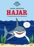 Jorden runt Hajar - pysselbok med klistermärken
