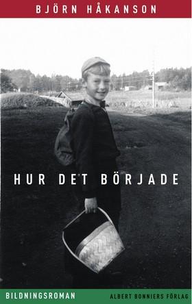 Hur det började : bildningsroman av Björn Håkanson