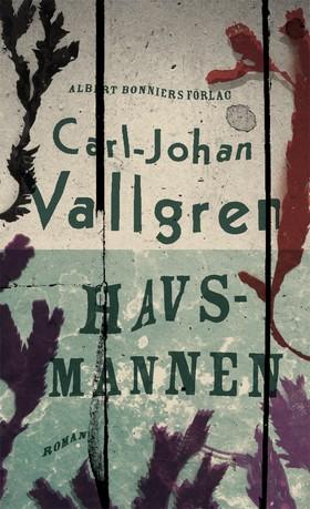 E-bok Havsmannen av Carl-Johan Vallgren