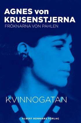 E-bok Kvinnogatan av Agnes von Krusenstjerna