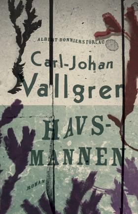 Havsmannen av Carl-Johan Vallgren