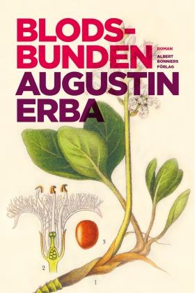 E-bok Blodsbunden av Augustin Erba
