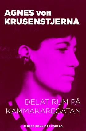 E-bok Delat rum på Kammakaregatan av Agnes von Krusenstjerna