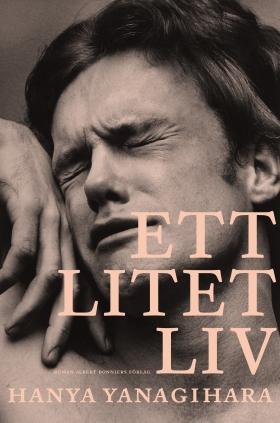 E-bok Ett litet liv  av Hanya Yanagihara