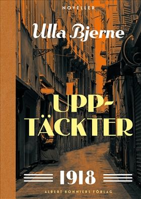 E-bok Upptäckter : noveller av Ulla Bjerne