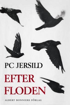 E-bok Efter floden av P. C. Jersild