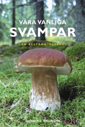 Våra vanliga svampar