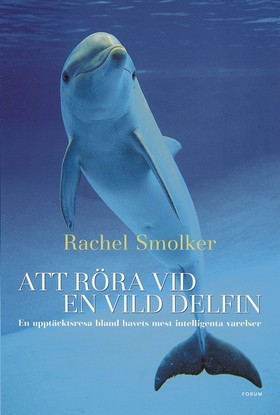 Att röra vid en vild delfin
