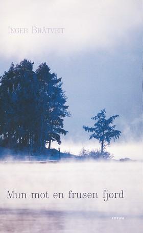 Mun mot en frusen fjord