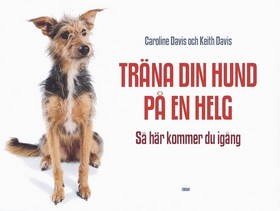 Träna din hund på en helg