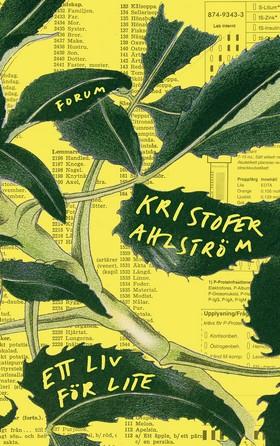 E-bok Ett liv för lite av Kristofer Ahlström