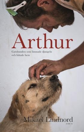 Arthur gatuhunden
