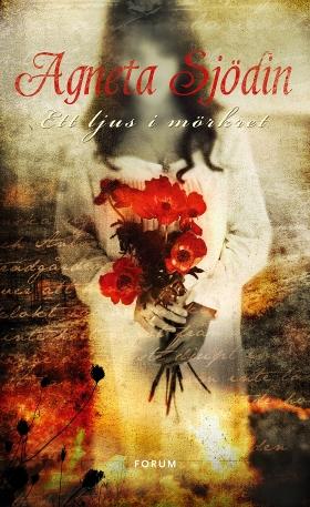 E-bok Ett ljus i mörkret av Agneta Sjödin