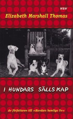 I hundars sällskap