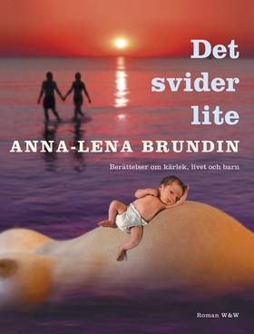 Det svider lite av Anna-Lena Brundin