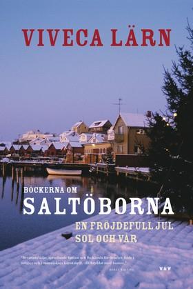 Böckerna om Saltöborna : En fröjdefull jul & Sol och vår av Viveca Lärn