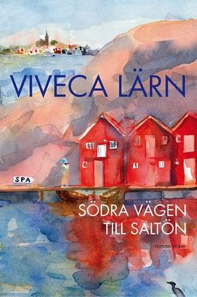 E-bok Södra vägen till Saltön av Viveca Lärn