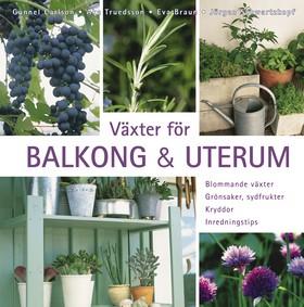 Växter för balkong & uterum