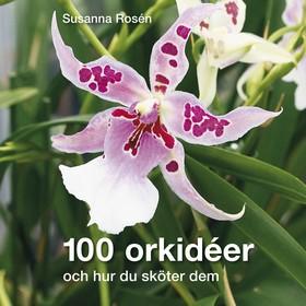 100 orkidéer