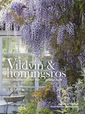 Vildvin & honungsros - klätterväxter för gröna rum