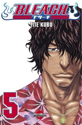 Bleach 05 av Tite Kubo