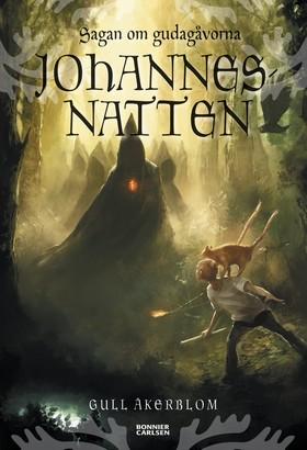 E-bok Johannesnatten av Gull Åkerblom