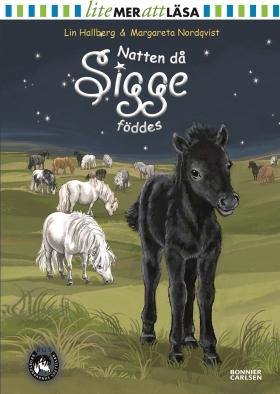 E-bok Natten då Sigge föddes  av Lin Hallberg