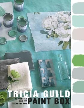 Paint Box : 45 paletter för ett vackrare hem av Tricia Guild