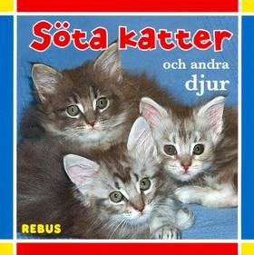 Söta katter och andra djur