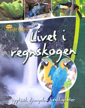30108: Livet i regnskogen