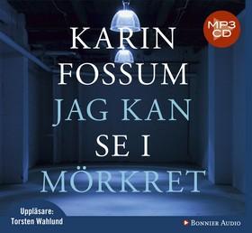 Ljudbok Jag kan se i mörkret av Karin Fossum