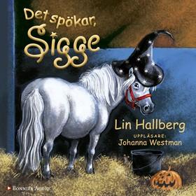 Ljudbok Det spökar, Sigge av Lin Hallberg