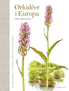 Orkidéer i Europa : vilda, vackra & väna av Bo Mossberg