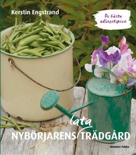 Nybörjarens lata trädgård : de bästa odlingstipsen av Kerstin Engstrand