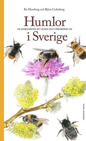 Humlor i Sverige : 40 arter att älska och förundras över av Bo Mossberg