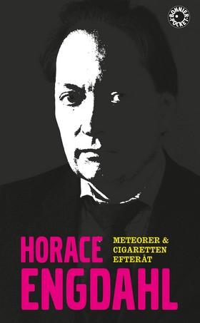 Meteorer & Cigaretten efteråt av Horace Engdahl