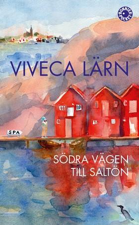 Södra vägen till Saltön av Viveca Lärn
