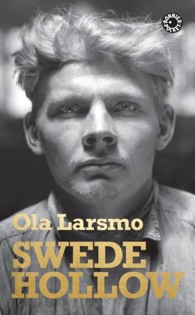 Swede Hollow av Ola Larsmo