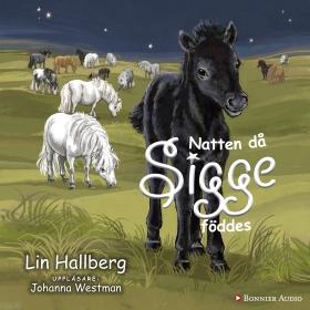 Natten då Sigge föddes  av Lin Hallberg