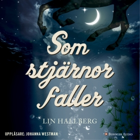 Som stjärnor faller av Lin Hallberg