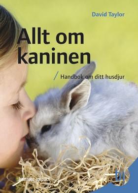 Allt om kaninen