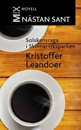 E-bok Solskensraga i Skinnarviksparken av Kristoffer Leandoer