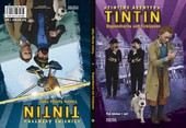 Omslag fr boken Tintins ventyr: Dupondtarna och ficktjuven/Tintins farliga flykt