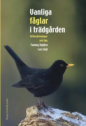 Vanliga fåglar i trädgården