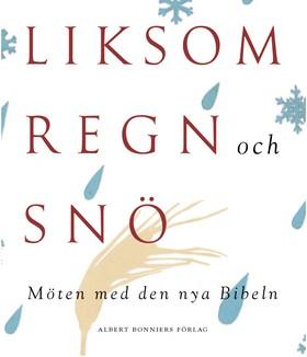 Liksom regn och snö - möten med den nya Bibeln