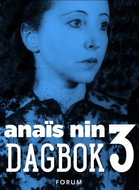 Dagbok 3