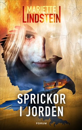 Sprickor i jorden