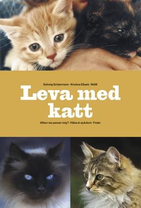Leva med katt
