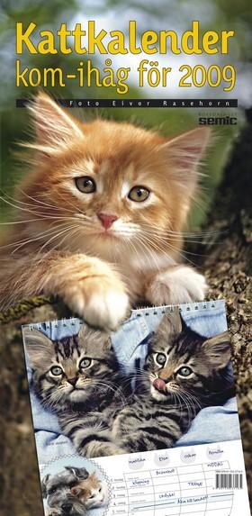 Kattkalender - kom-ihåg för 2009