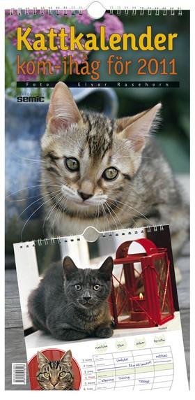 Kattkalender - kom-ihåg för 2011